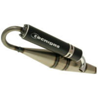 exhaust Tecnigas Next-R for Peugeot vertical (98-) 13842 für Peugeot Speedfight  50 VGA S1B0KB 1999, 5 PS, 3,7 kw